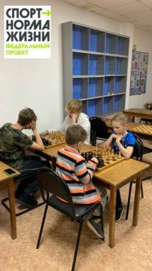 Секция шахмат в СК Олимп Коряжма